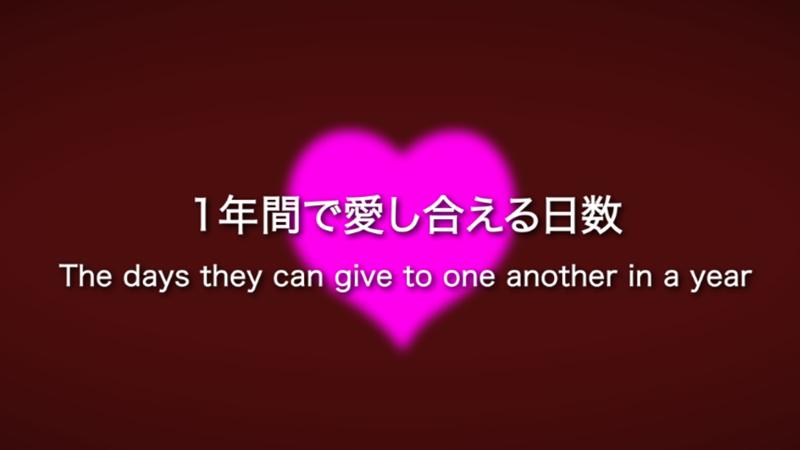 人気No.1のオープニングビデオ「365日」